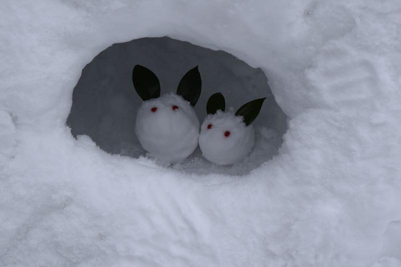 雪うさぎの親子